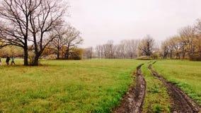 Camino de la primavera Foto de archivo libre de regalías
