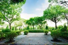 Camino de la roca machacada en el jardín verde Imágenes de archivo libres de regalías