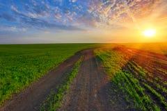 Camino de la rodera en campo verde en puesta del sol Imagen de archivo libre de regalías