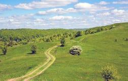Camino de la rodera en la colina verde imagenes de archivo