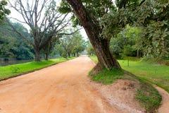 Camino de la rodera en parque foto de archivo libre de regalías