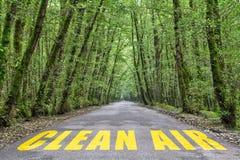 Camino de la selva al aire limpio imagen de archivo