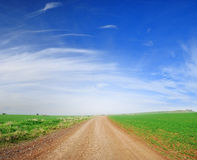Camino de la suciedad y campo verde Foto de archivo libre de regalías