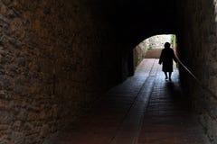 Camino de la vida Imagen de archivo libre de regalías