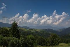 Camino de las montañas cárpatas Imagenes de archivo