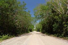 Camino de lazo escénico foto de archivo