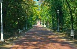 Camino de los ladrillos rojos en el parque de Palic, Serbia foto de archivo
