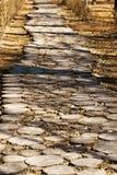 Camino de madera en el parque Foto de archivo libre de regalías
