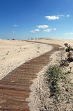 Camino de madera en la arena Imágenes de archivo libres de regalías