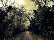 Camino de madera inglés Imagen de archivo