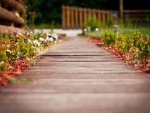 Camino de madera a través del jardín Imagenes de archivo
