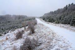 Camino de menor importancia cubierto con nevadas fuertes Fotos de archivo libres de regalías