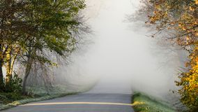 Camino de niebla, avenida imagen de archivo