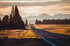 Camino de Nueva Zelanda Fotografía de archivo libre de regalías