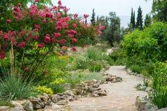 Camino de Paradiso Foto de archivo