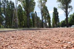 Camino de pequeñas piedras rojas Foto de archivo