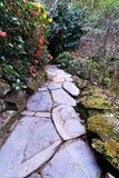 Camino de piedra Imagen de archivo