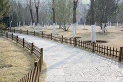 Camino de piedra curvado Foto de archivo