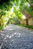Camino de piedra del jardín con la hierba Imagenes de archivo