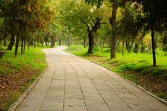 Camino de piedra en el cementerio de la familia de Confucio Imagen de archivo libre de regalías