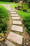 Camino de piedra en el jardín Fotografía de archivo libre de regalías