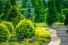 Camino de piedra en parque del jardín Arbustos decorativos adentro Imagen de archivo libre de regalías