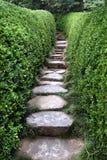 Camino de piedra en una configuración del jardín Imágenes de archivo libres de regalías
