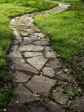 Camino de piedra resumido con la hierba verde Imagen de archivo
