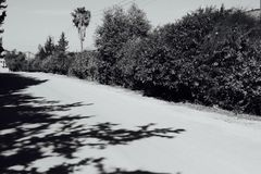 Camino de punta Imagenes de archivo
