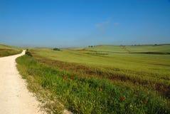 Camino de Santiago countryside Spain. View of the Camino de Santiago (Pilgrims Way) Spain Royalty Free Stock Image