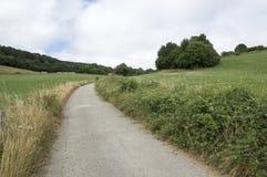 Camino de Santiago från Roncesvalles till Zubiri Royaltyfri Bild