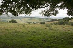 Camino de Santiago från Roncesvalles till Zubiri Fotografering för Bildbyråer
