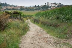 Pilgrimage on the Camino de Santiago trail, Portugal. Camino de Santiago trail close to Arcos, Portugal Royalty Free Stock Photography