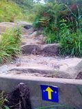 Camino de Santiago (Way of St. James) Yellow arrow. Royalty Free Stock Image