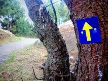 Camino de Santiago (Way of St. James) Yellow arrow. Stock Image
