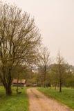 Camino de tierra alrededor del árbol con el banco Fotos de archivo libres de regalías