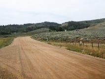 Camino de tierra en Colorado rural Fotografía de archivo libre de regalías