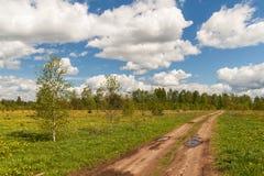 Camino de tierra en el prado de la primavera Foto de archivo