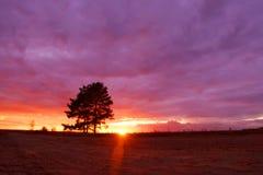 Camino de tierra en la puesta del sol Imagenes de archivo