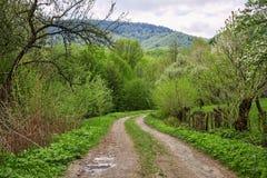 Camino de tierra en montaña cárpata del bosque Imagen de archivo libre de regalías
