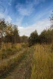 Camino de tierra en un primer colorido del bosque del otoño Imagenes de archivo