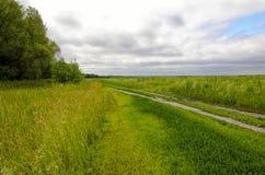 Camino de tierra a lo largo de los prados y de los bosques verdes Fotos de archivo libres de regalías