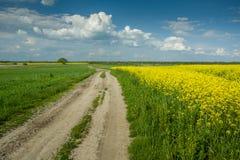 Camino de tierra por un campo de la rabina y de nubes amarillas en el cielo imagenes de archivo