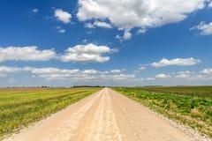 Camino de tierra que enmarca del cielo brillante imagen de archivo libre de regalías