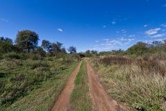 Camino de tierra que lleva en el yermo desconocido Fotografía de archivo libre de regalías