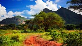 Camino de tierra rojo, arbusto con la sabana. Tsavo del oeste, Kenia, África Imagen de archivo libre de regalías
