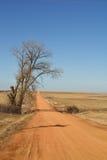 Camino de tierra rojo largo Imágenes de archivo libres de regalías