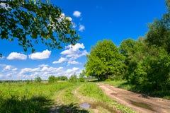 Camino de tierra rural abandonado a lo largo del prado joven en un día de verano brillante, Rusia Imagen de archivo libre de regalías