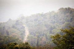Camino de tierra a través de la selva africana Fotos de archivo libres de regalías