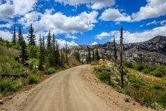 Camino de zona remota de Idaho imagenes de archivo